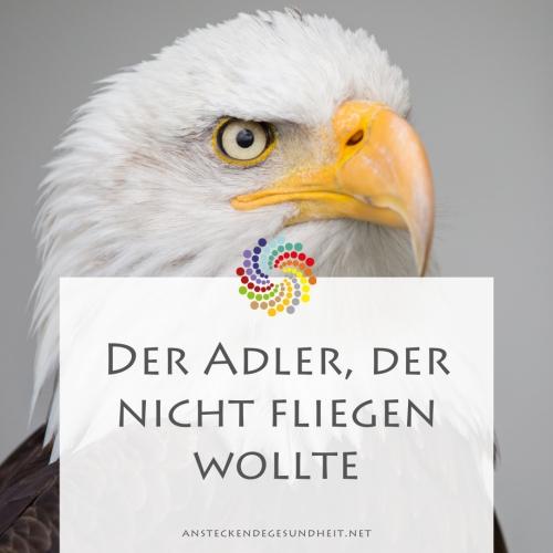 Der Adler, der nicht fliegen wollte