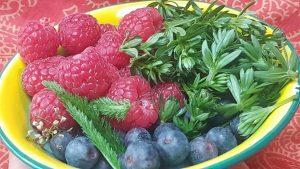Frische Beeren mit Schafgabe und Wiesenlabkraut
